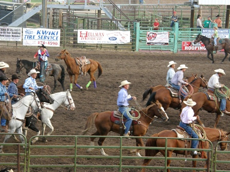 Warm up for Ranch Rodeo at the Delta County Fair.